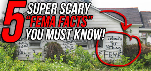 FEMA Camp Facts