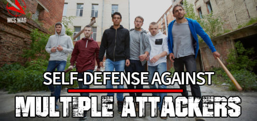 Self Defense Against Multiple Attackers: Mob Violence /Flash Mob Defense